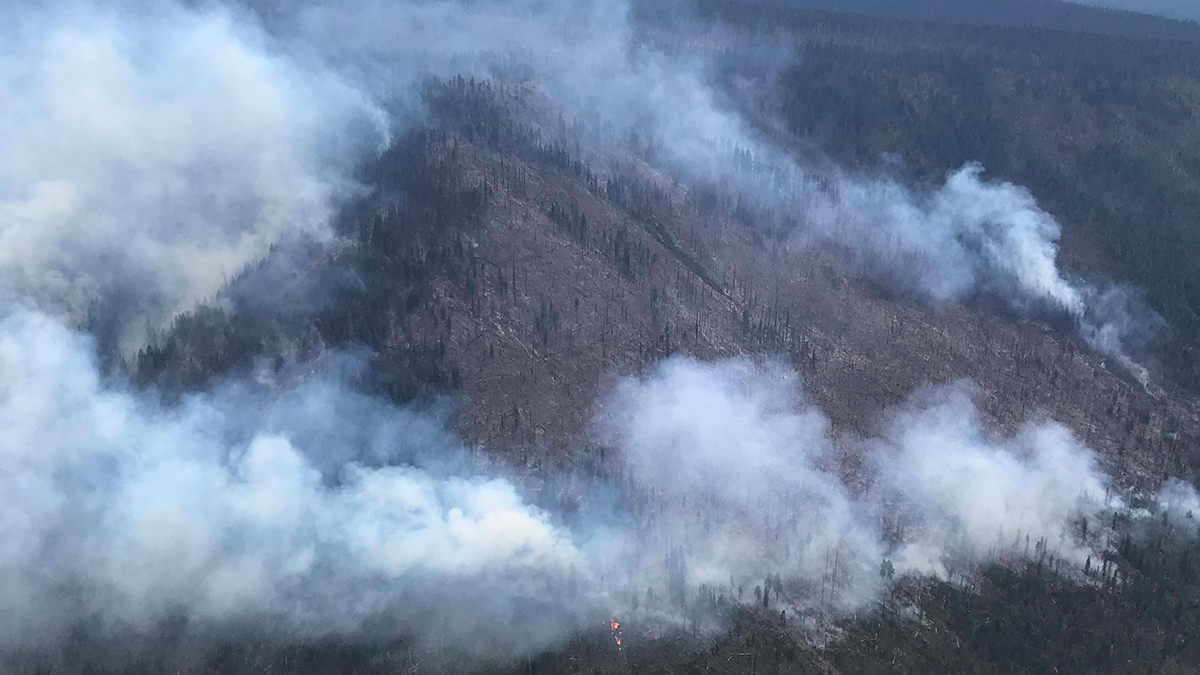 Gopher Fire is now 340 acres burning 11 miles east of Prospect, Ore. in the Sky Lakes Wilderness.(Inciweb)