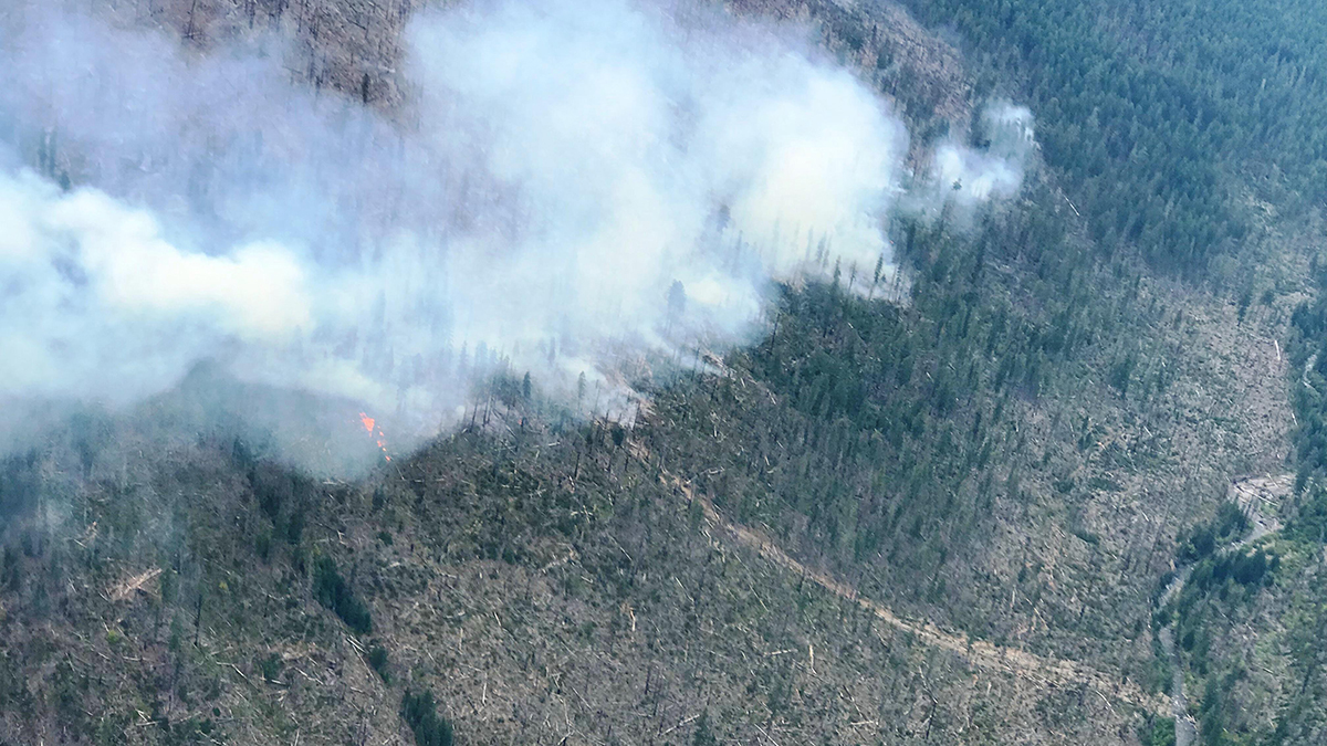 Gopher Fire remains 340 acres burning 11 miles east of Prospect, Ore. in the Sky Lakes Wilderness.(Inciweb)