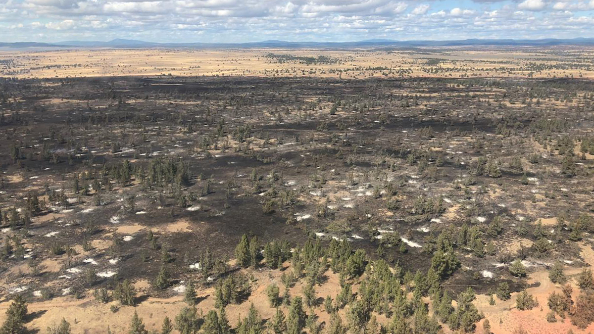 The Lone Fire in the Modoc National Fores is now 87% contained. (Inciweb)