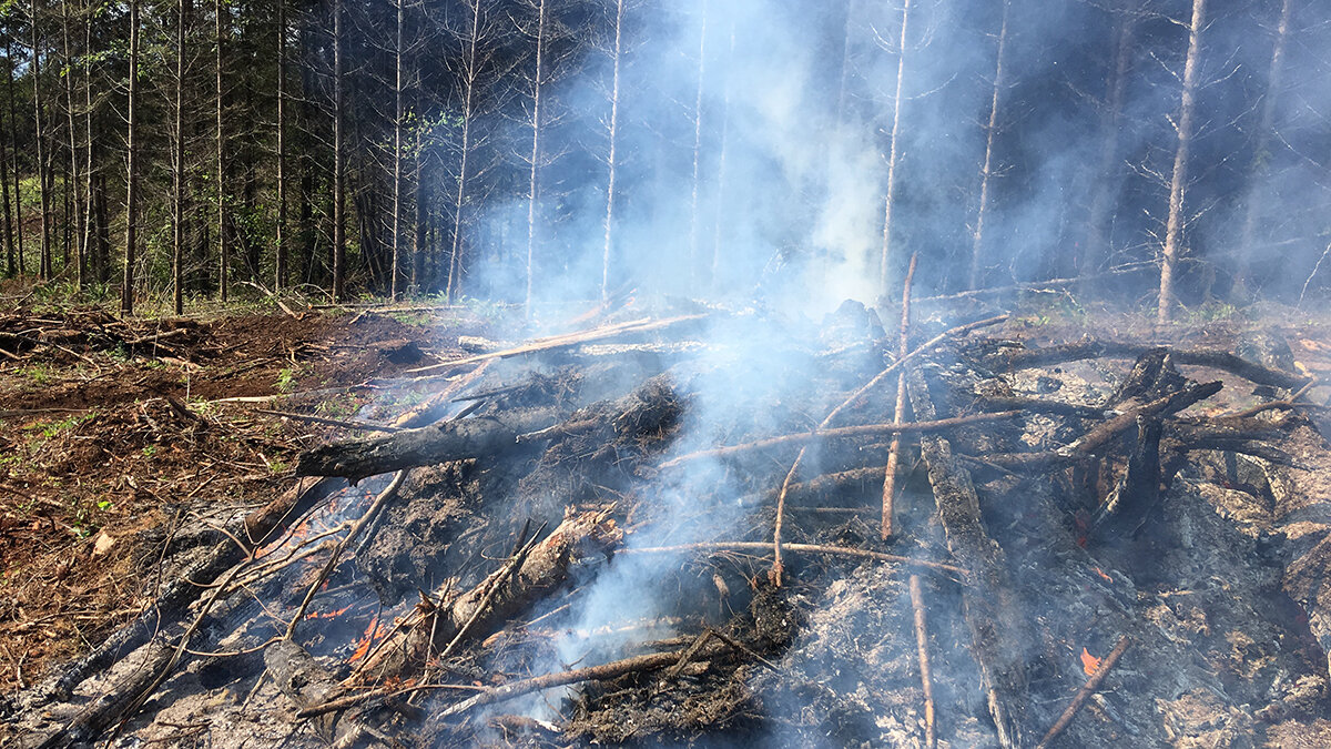 Cool, wet weather makes it possible to burn slash piles to remove woody fuels, reducing high-intensity wildfire risk. (Submitted Photo)