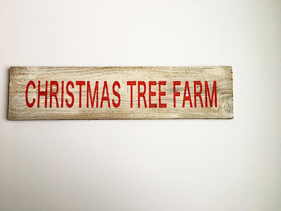 christmas tree farm.jpg