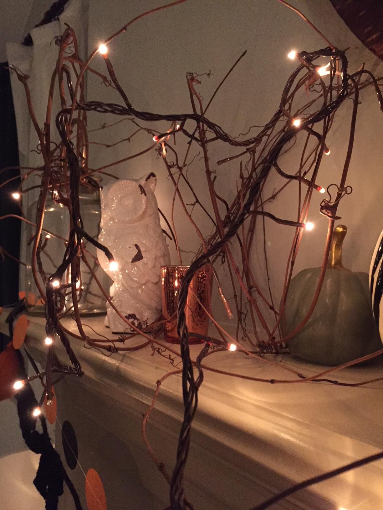 halloween lights 1.JPG