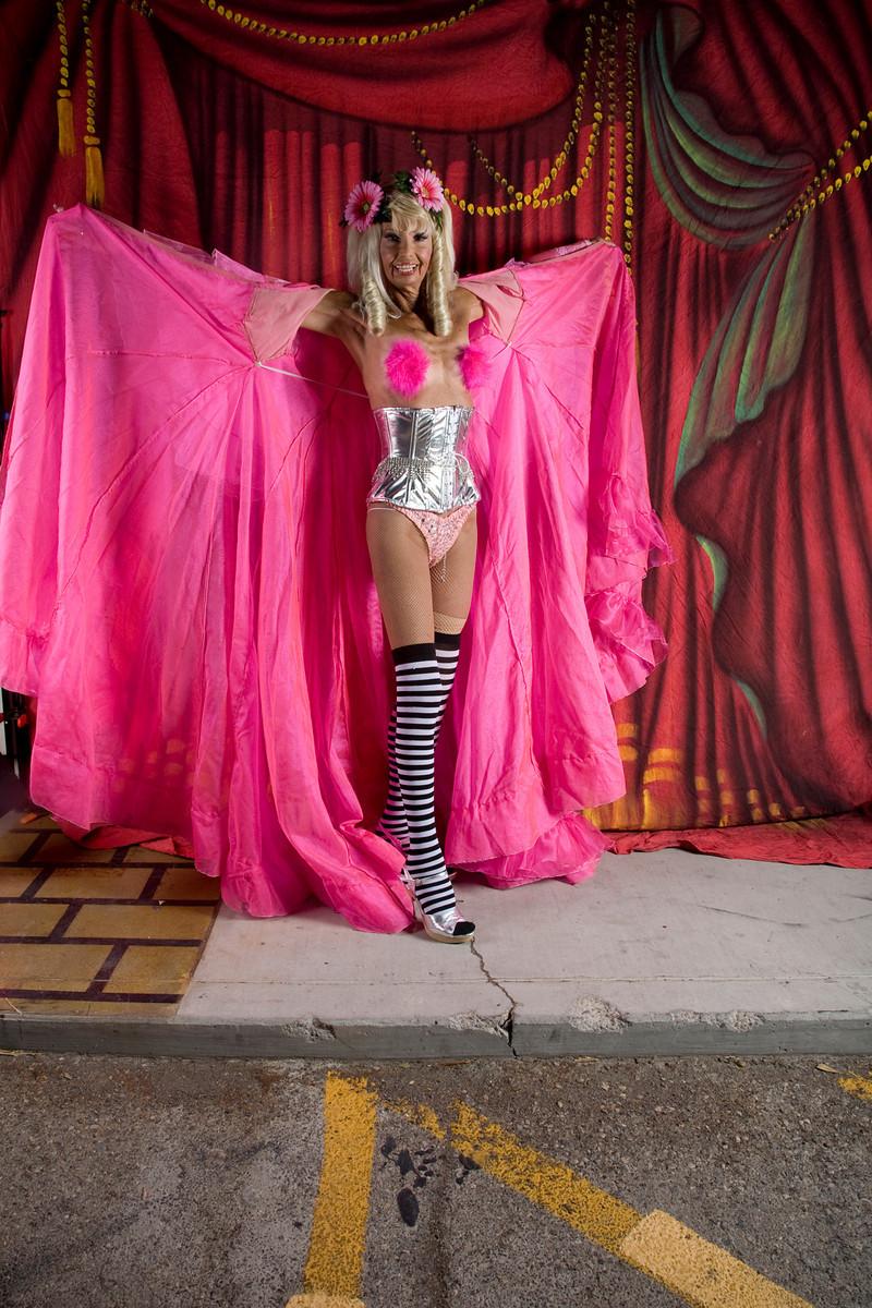 Daisy Delight Exotic World 2010 Plaza Hotel