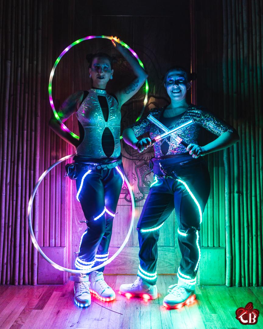 LED Jacksonville Zoo-1.jpg