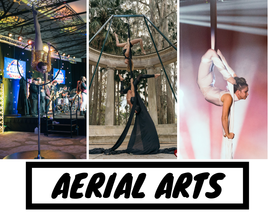 AERIAL ARTS MAIN.png