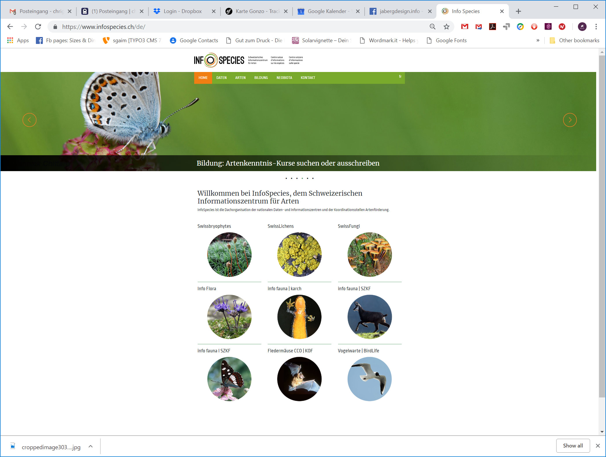 Redesign Website InfoSpecies