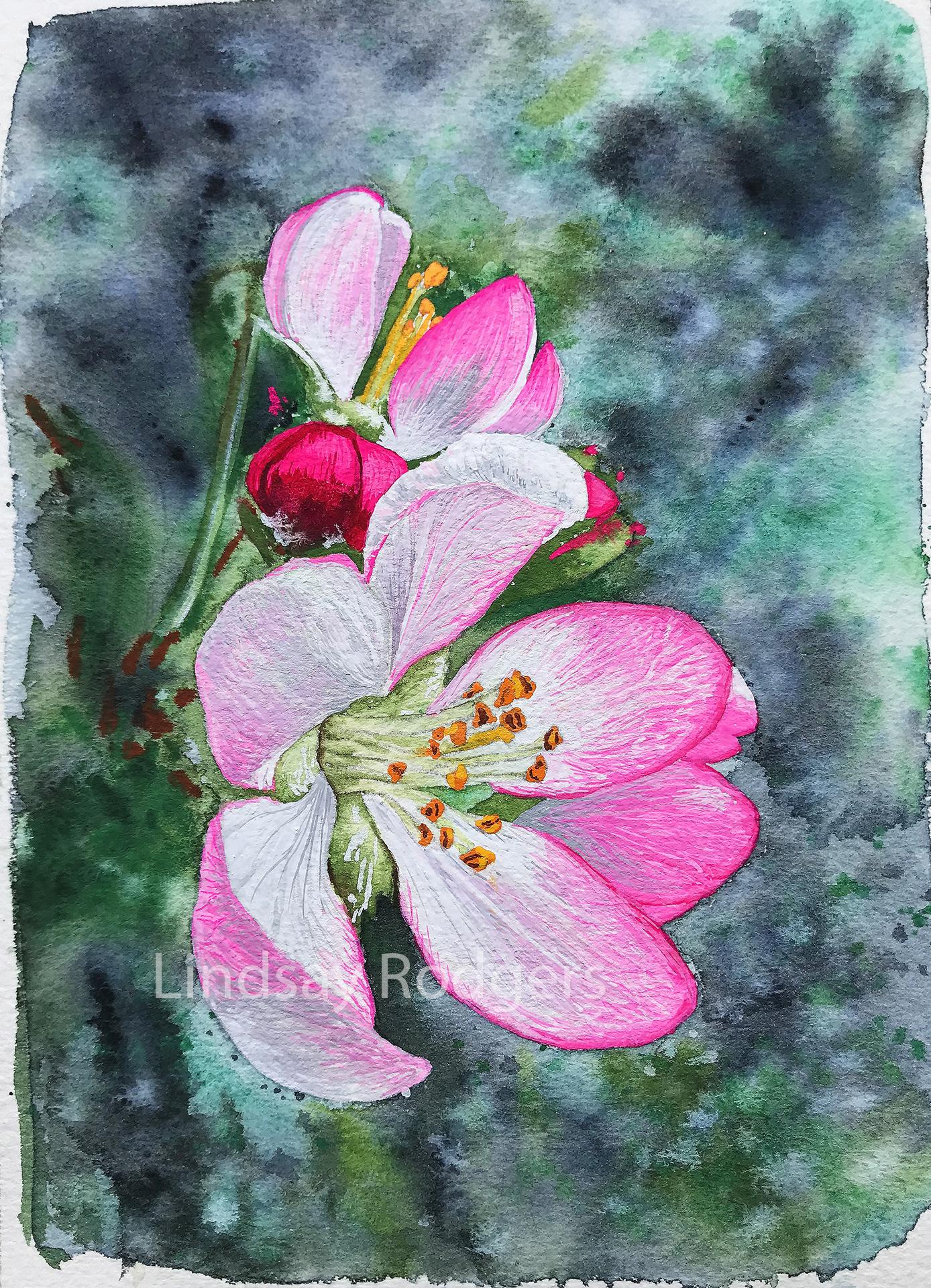 apple blossom etsy.jpg
