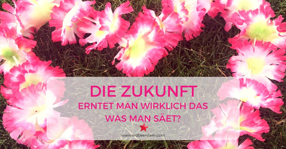 23-FB-und-Blog-In-die-Zukunft-schauen-Erntet-man-wirklich-was-man-säet-.png