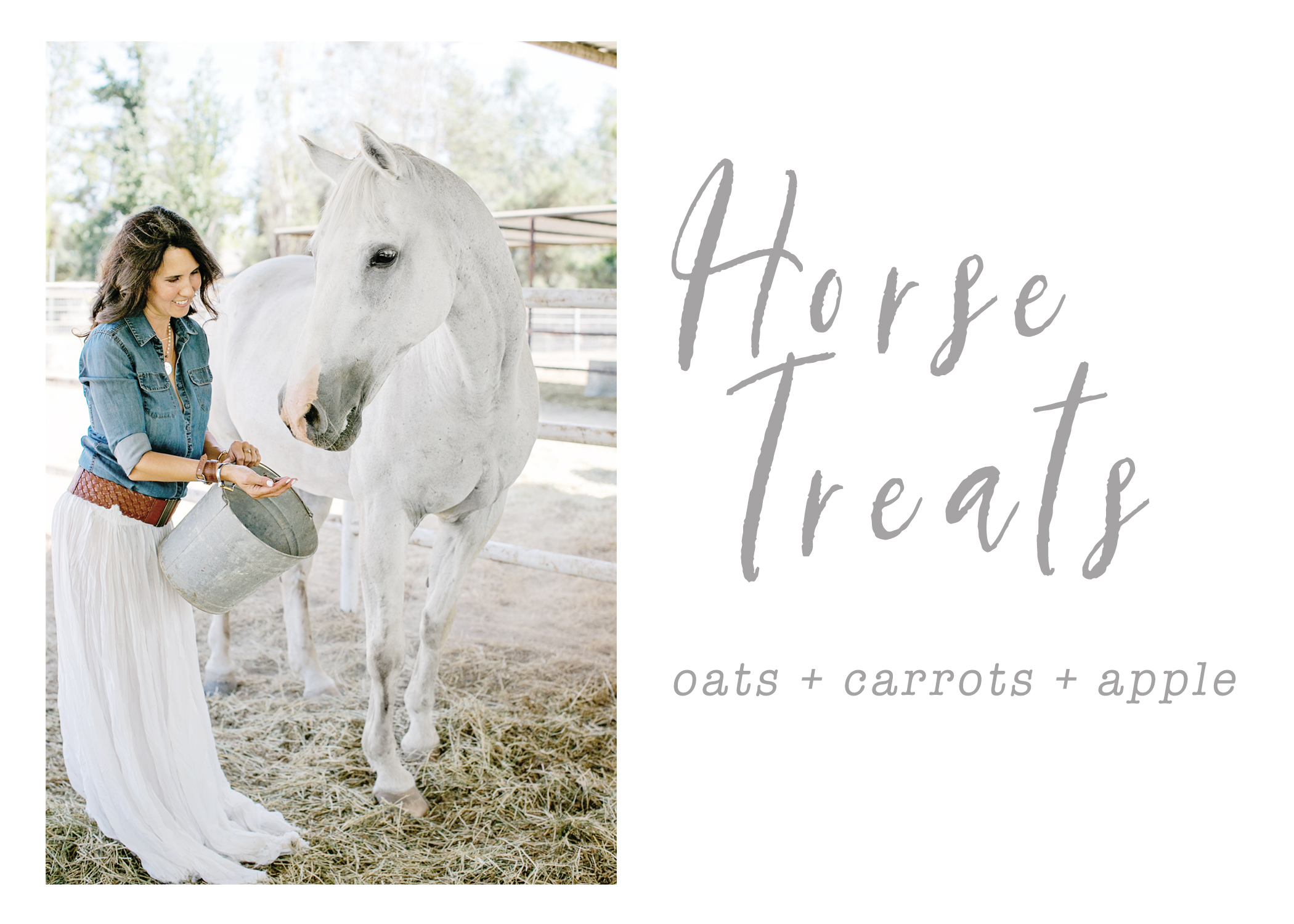 Horse Treat Blog.jpg