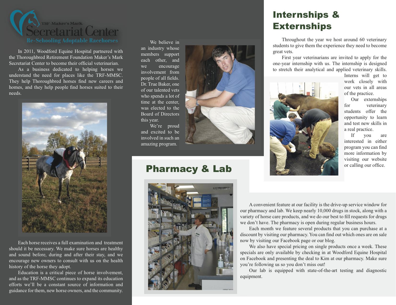 brochure 3 b.jpg