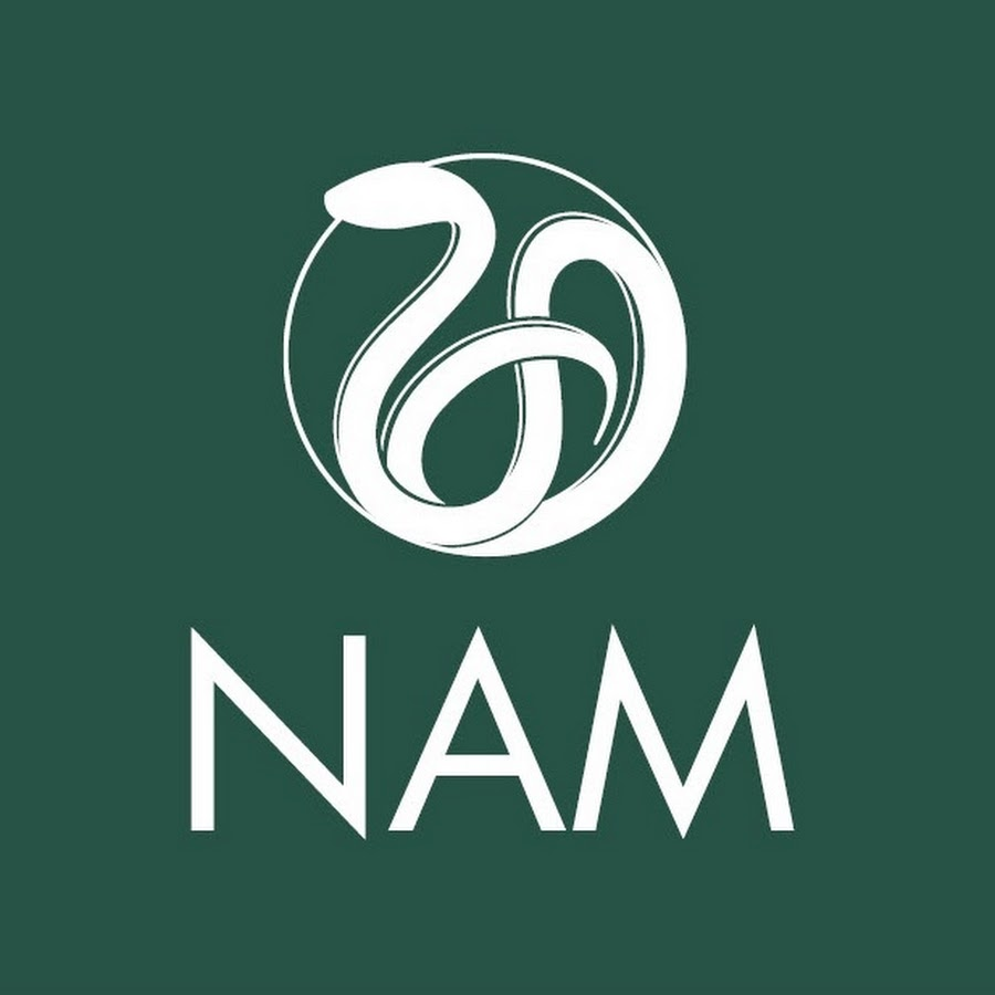 national acemy of medicine.jpg