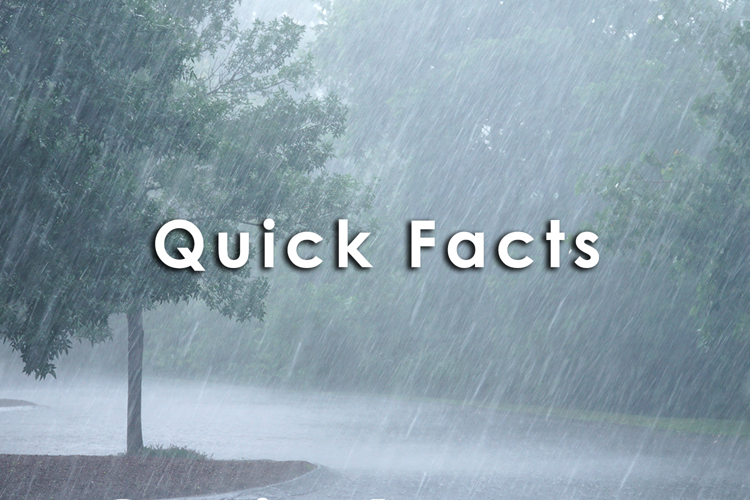 Quick Facts rain.png