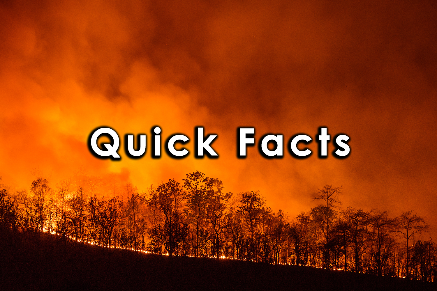 Quick Facts wildfire.png