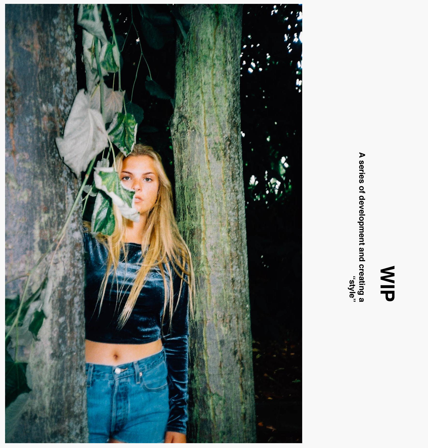WIP Cover 2.jpg