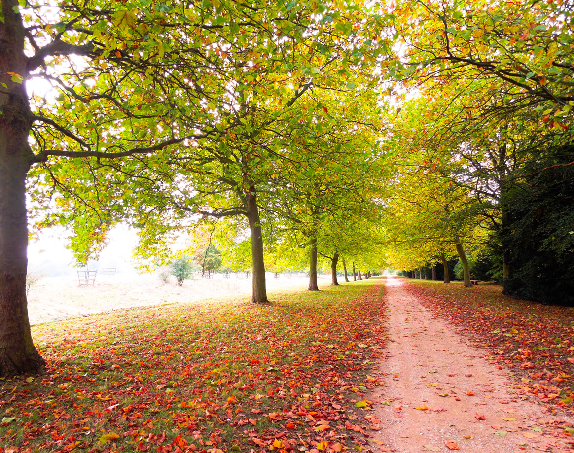 Plan on travelling to Europe in autumn or winter for the best savings (and less crowds!)