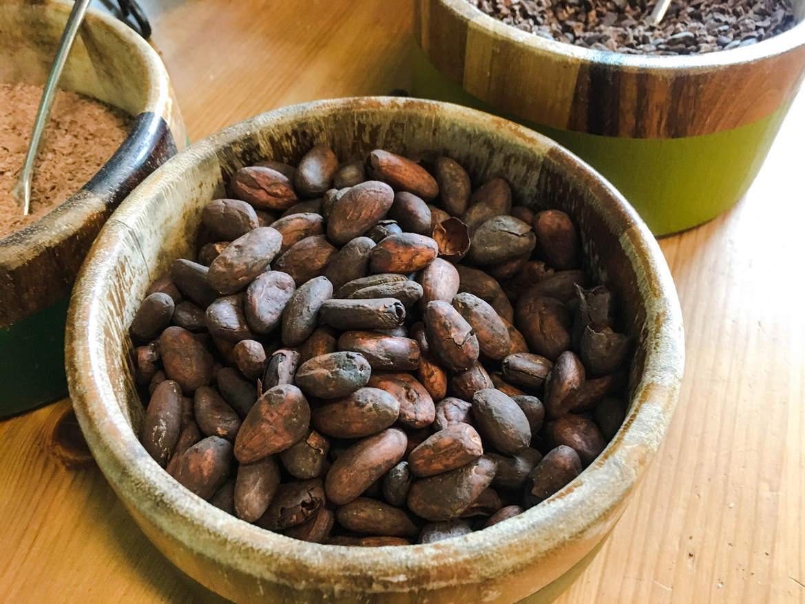 Freshly roasted cacao beans at Theo Chocolate