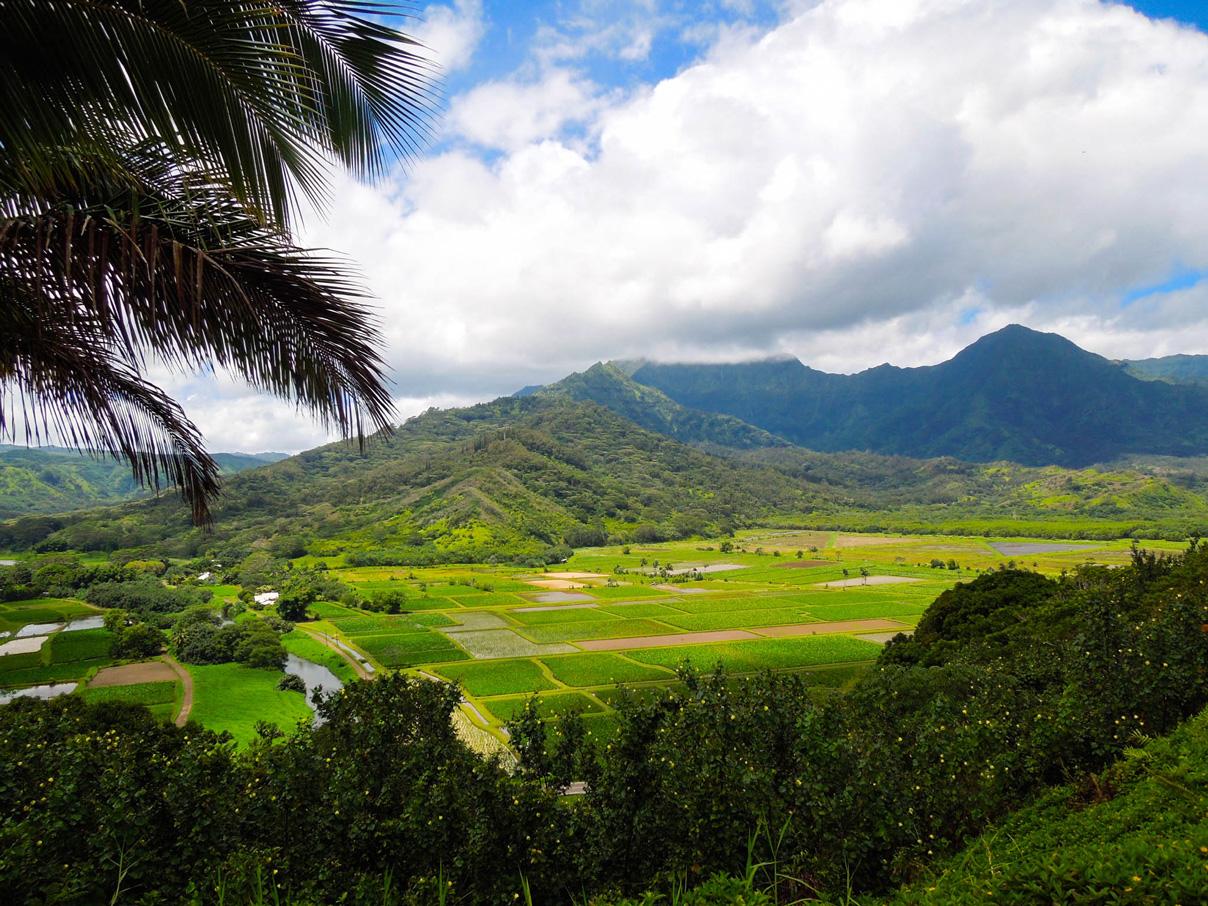 Hawaii at its finest!