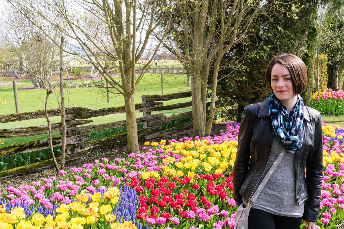 Skagit Valley Tulip Festival Roozengaarde Display Garden