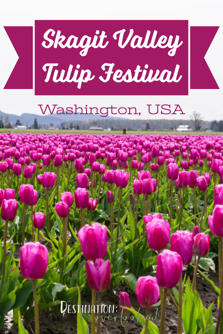 Skagit Valley Tulip Festival - Washington USA