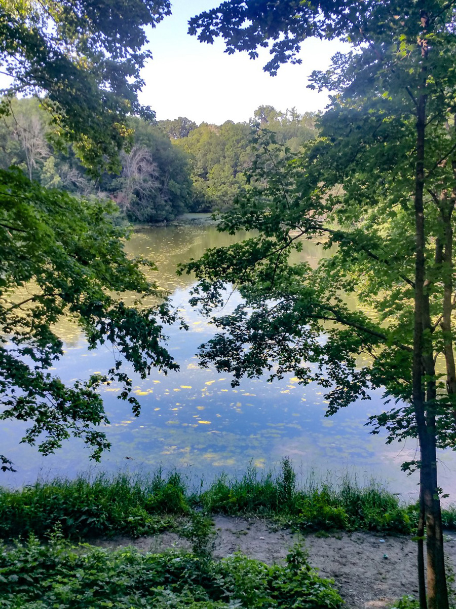 Quick US Trips: Spots to Travel To For The Day Or Weekend Matthiessen State Park Illinois