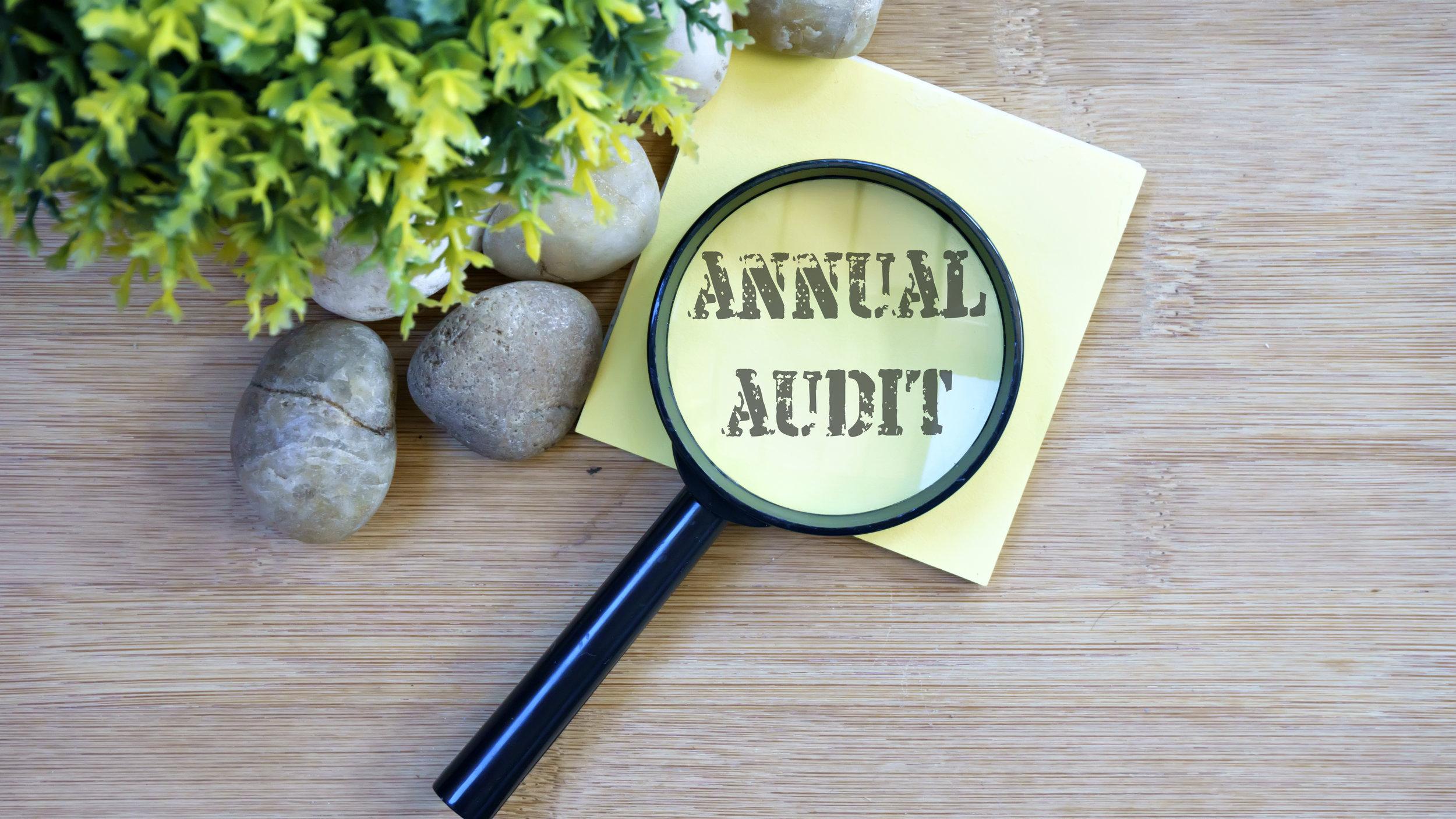 Annual Audit.jpeg