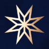 starlogo300x300.png