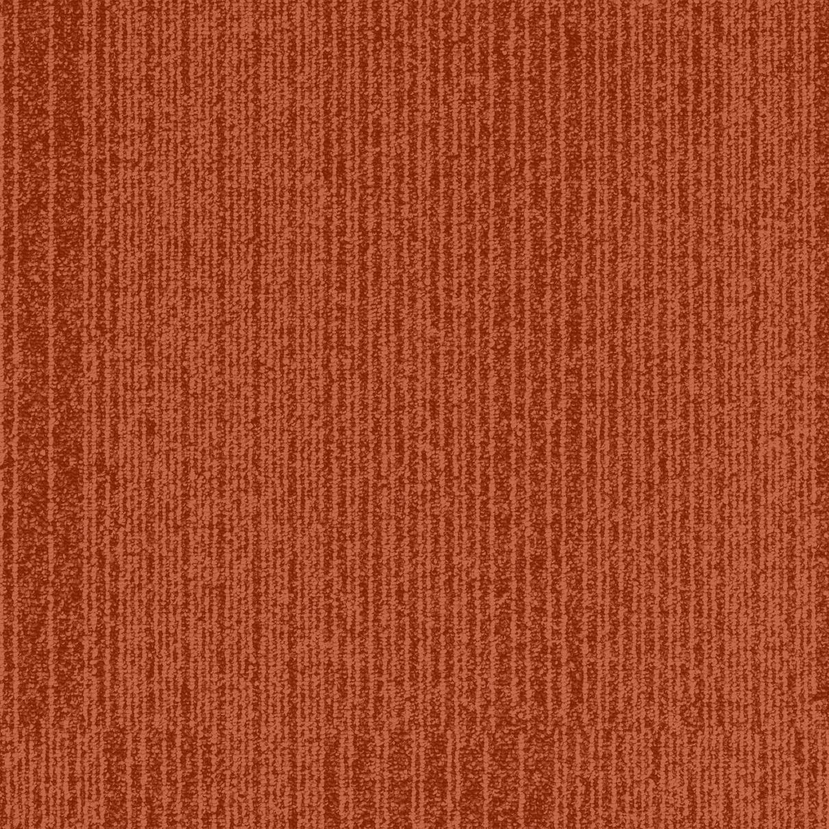 TRIV_N450.jpg