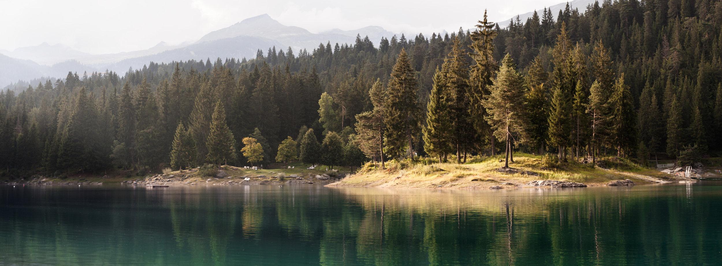 TomKluyver_Switzerland-1.jpg