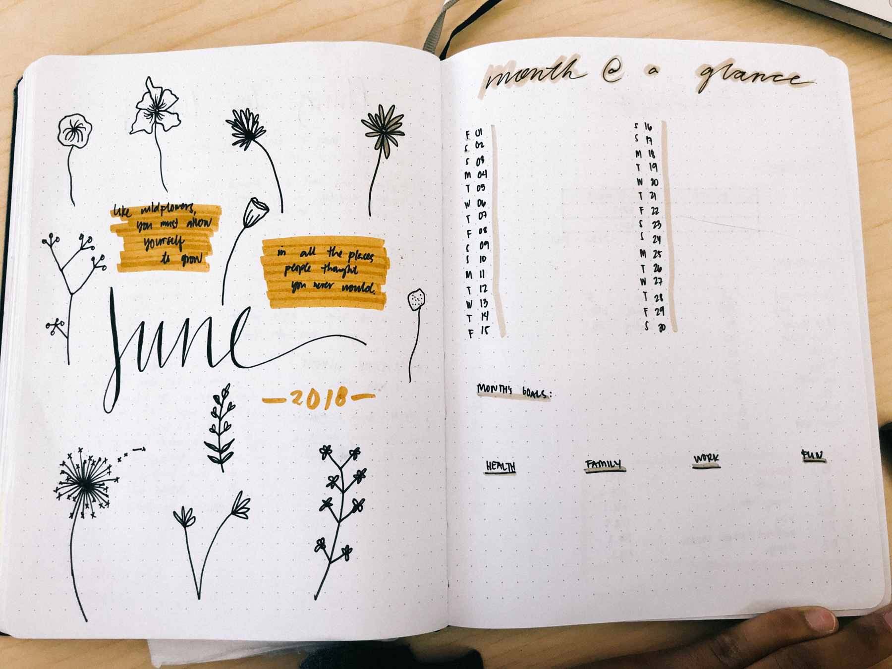 JUNE 2018 Bullet Journal Plan With Me | Month at a Glance
