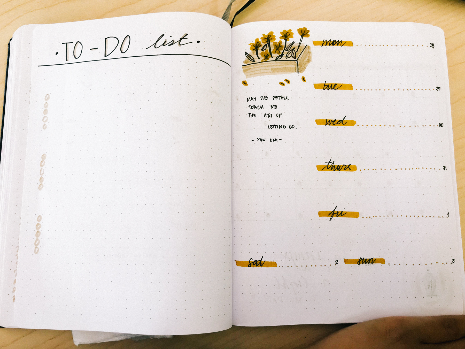 JUNE 2018 Bullet Journal Plan With Me | Weekly Spread To Do List