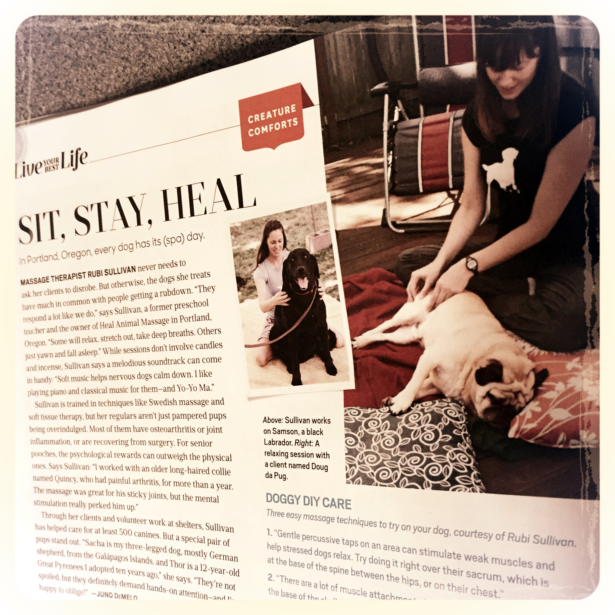 Oprah Magazine featured Heal Animal Massage! - If you flip to page 32 you can read up on it :) We hope you enjoy it!Very special thanks to Samson with Apolloni Vineyards and Doug da Pug with Turnip the Heat Cooking School for being amazing models!!