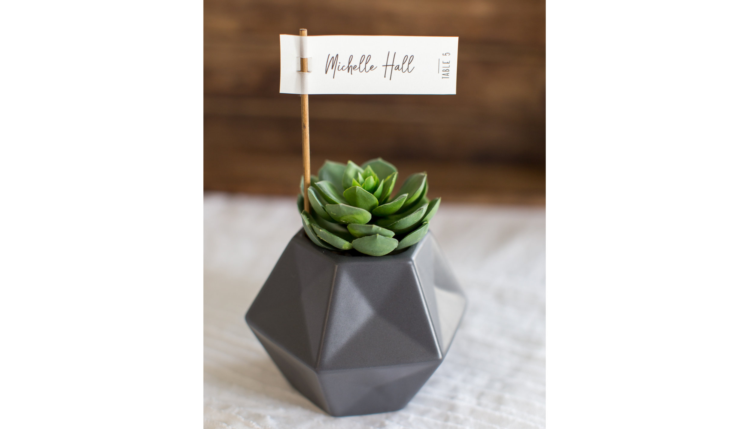 Place Card Succulent-01.jpg