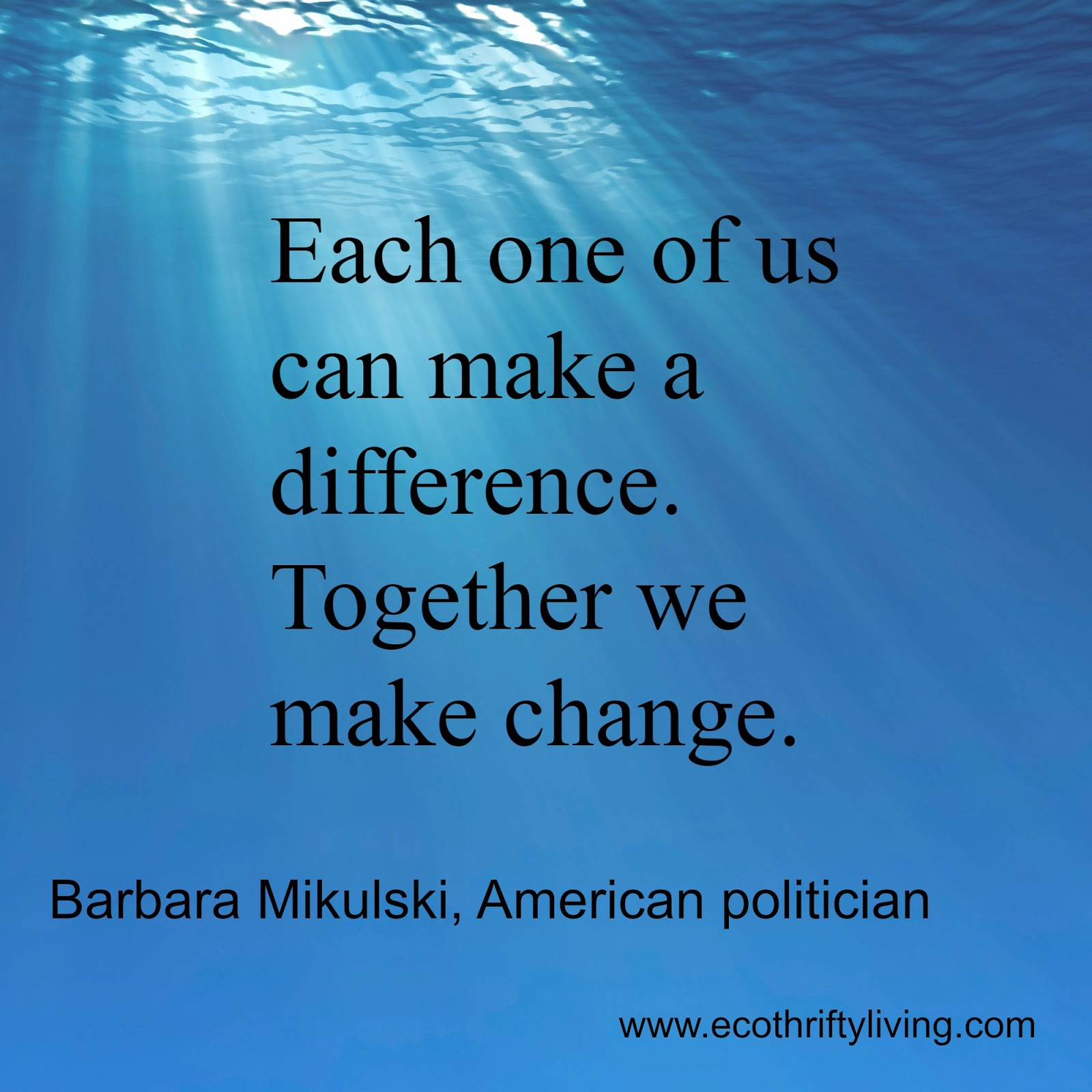 Together we can make a difference inspirational poster on pollution