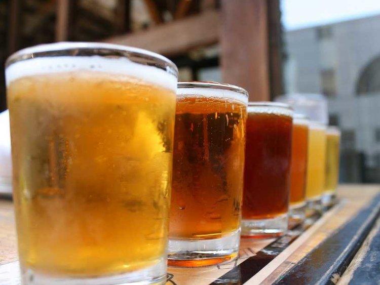 PringleBayFestival_craft_beer.jpg