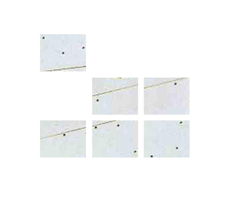 - Broken Large Glass #2(2012)Tiled Digital Prints