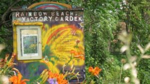 The historic Rainbow Beach Victory Garden is still thriving today (Photo Credit: Chicago Park District)
