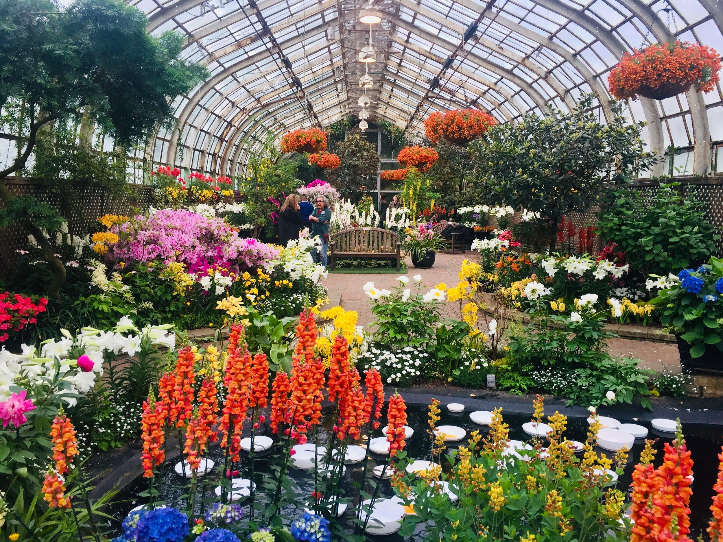 """""""Sunnyside Up"""" Spring Flower Show"""