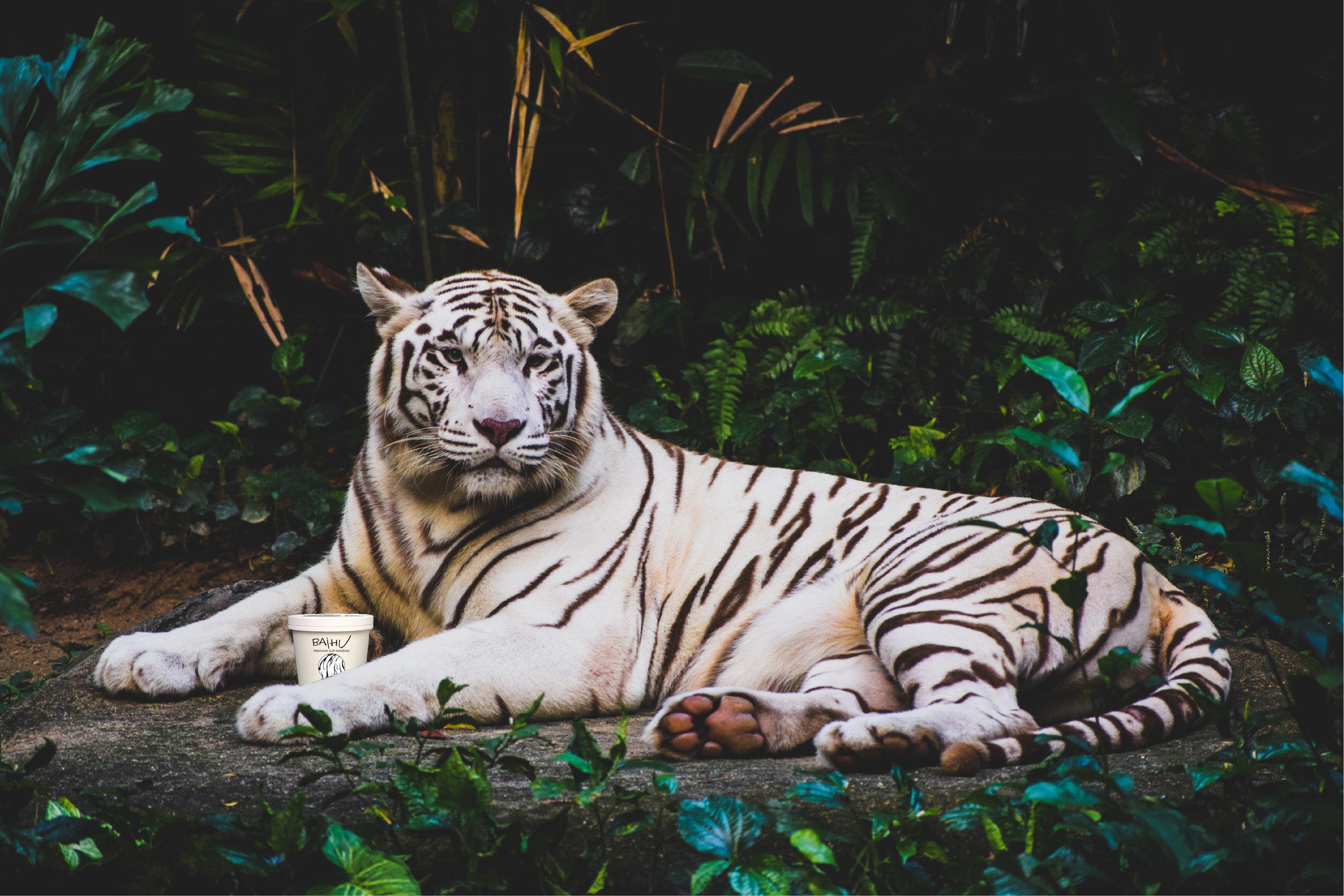 Baihu - White Tiger