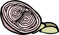 weggie new onion.png