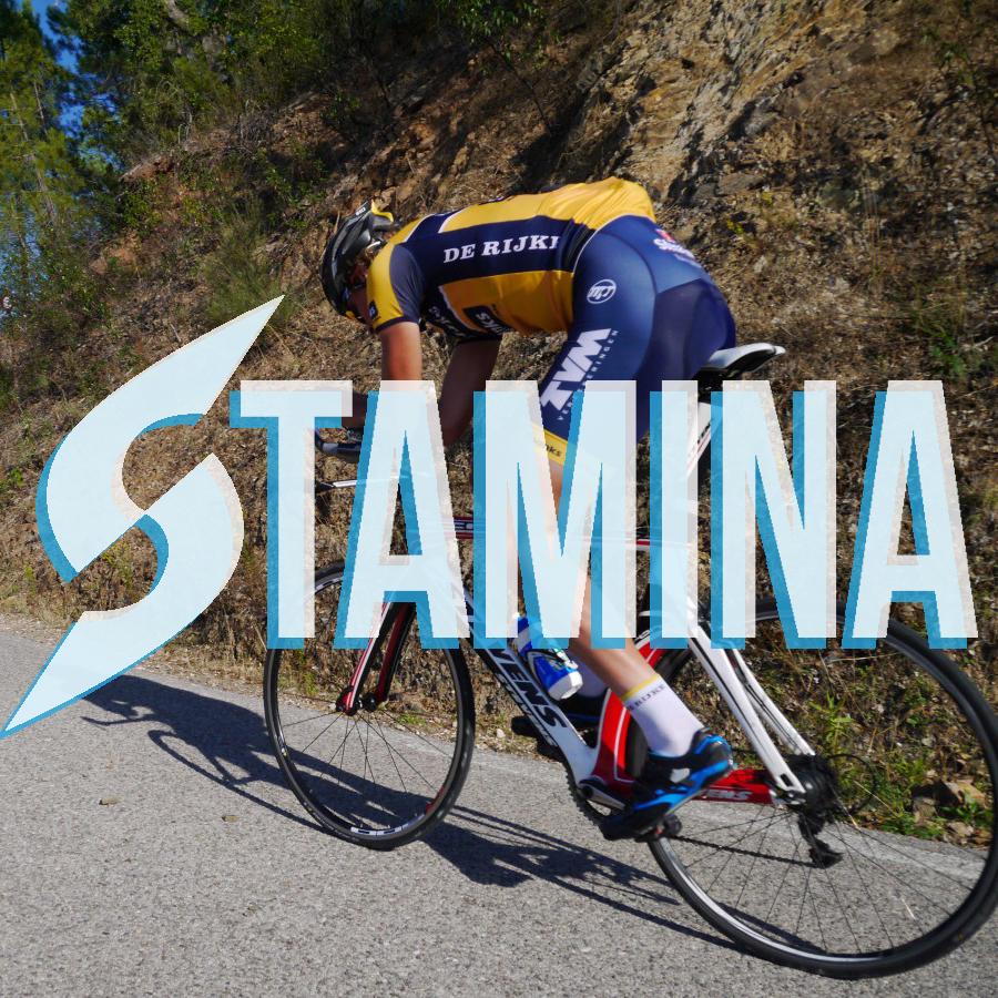 s power stamina3.jpg