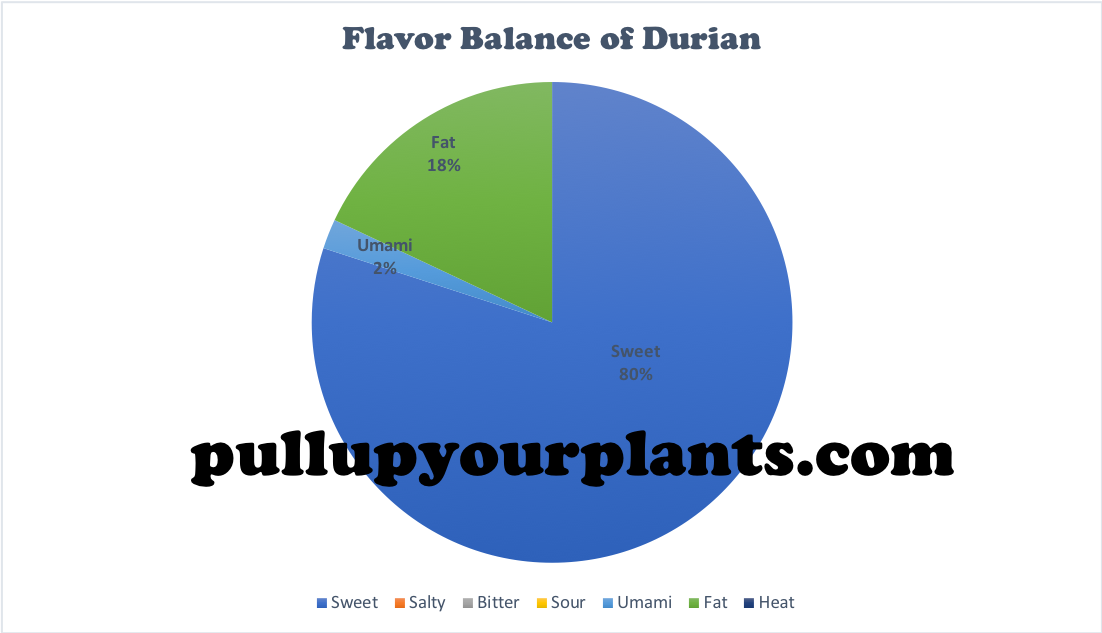 Graph 3: An Empirical Visualization of the Flavor Balance of  Durio zibethinus