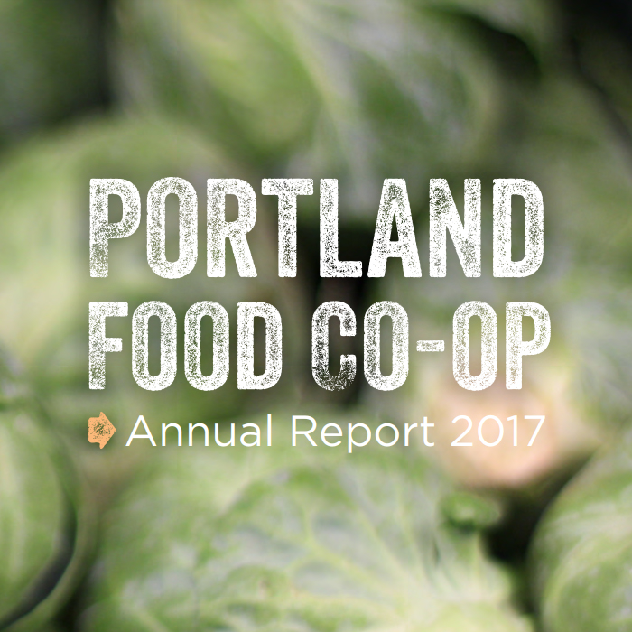 Annual Report Thumbnail_2017.jpg