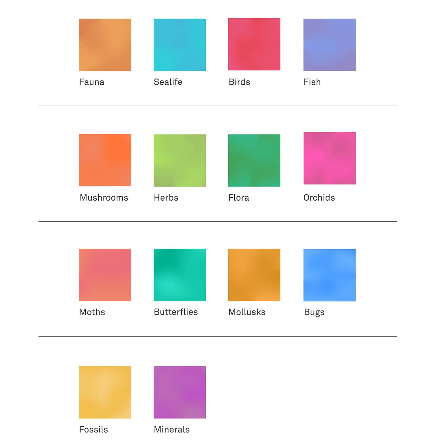 Fieldguide_colors.jpg
