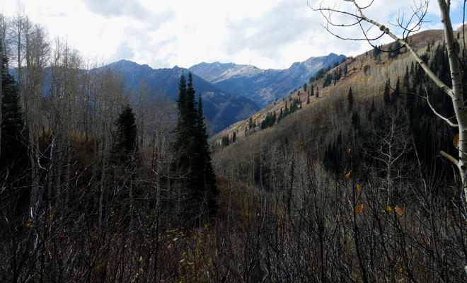 Utah8
