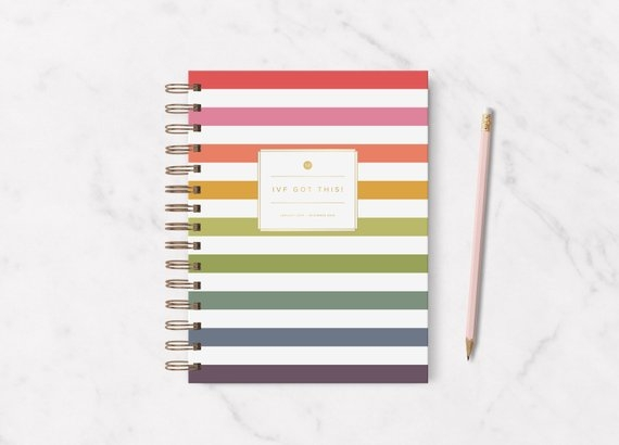 The 2019 IVF Planner [$30] by way of   Fertility in Focus
