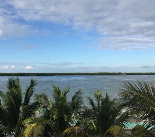 Rio Lagartos in Yucatan. This is a bird lover's paradise. And the flamingos are pretty, too.