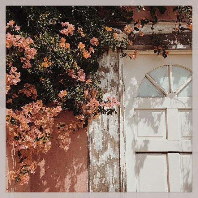 Sunday Morning feels #openthedoor 🌸