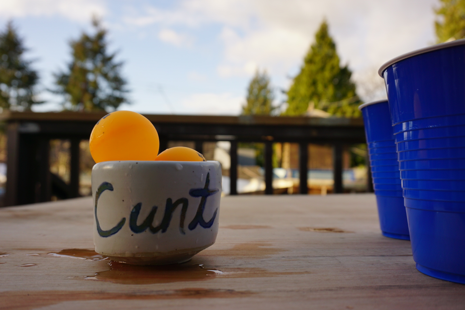 Cunt Cup.JPG