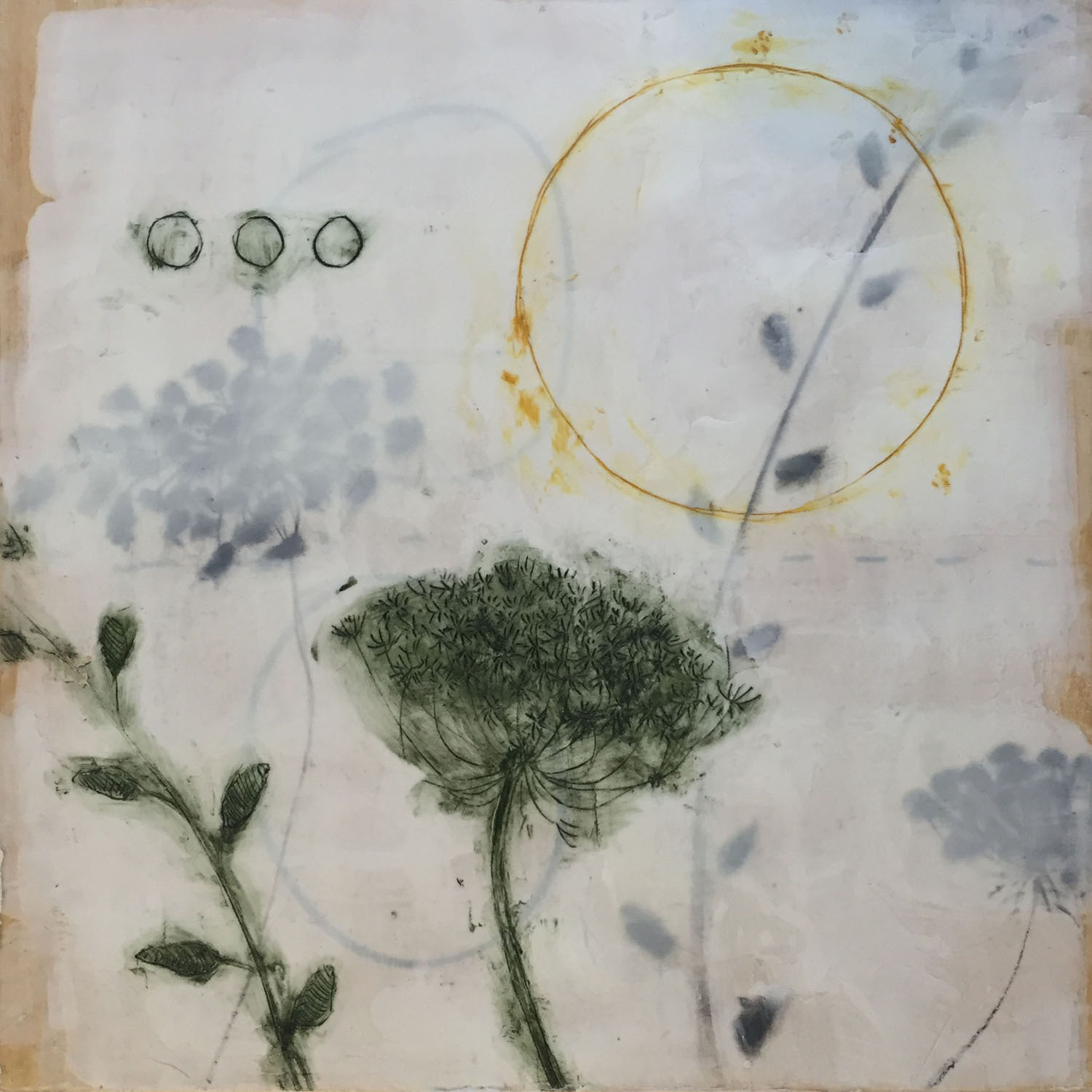 """Queen Anne's Lace-1 Encaustic and oil stick on wood panel. 10""""x10"""" (purchased by a private collector)"""