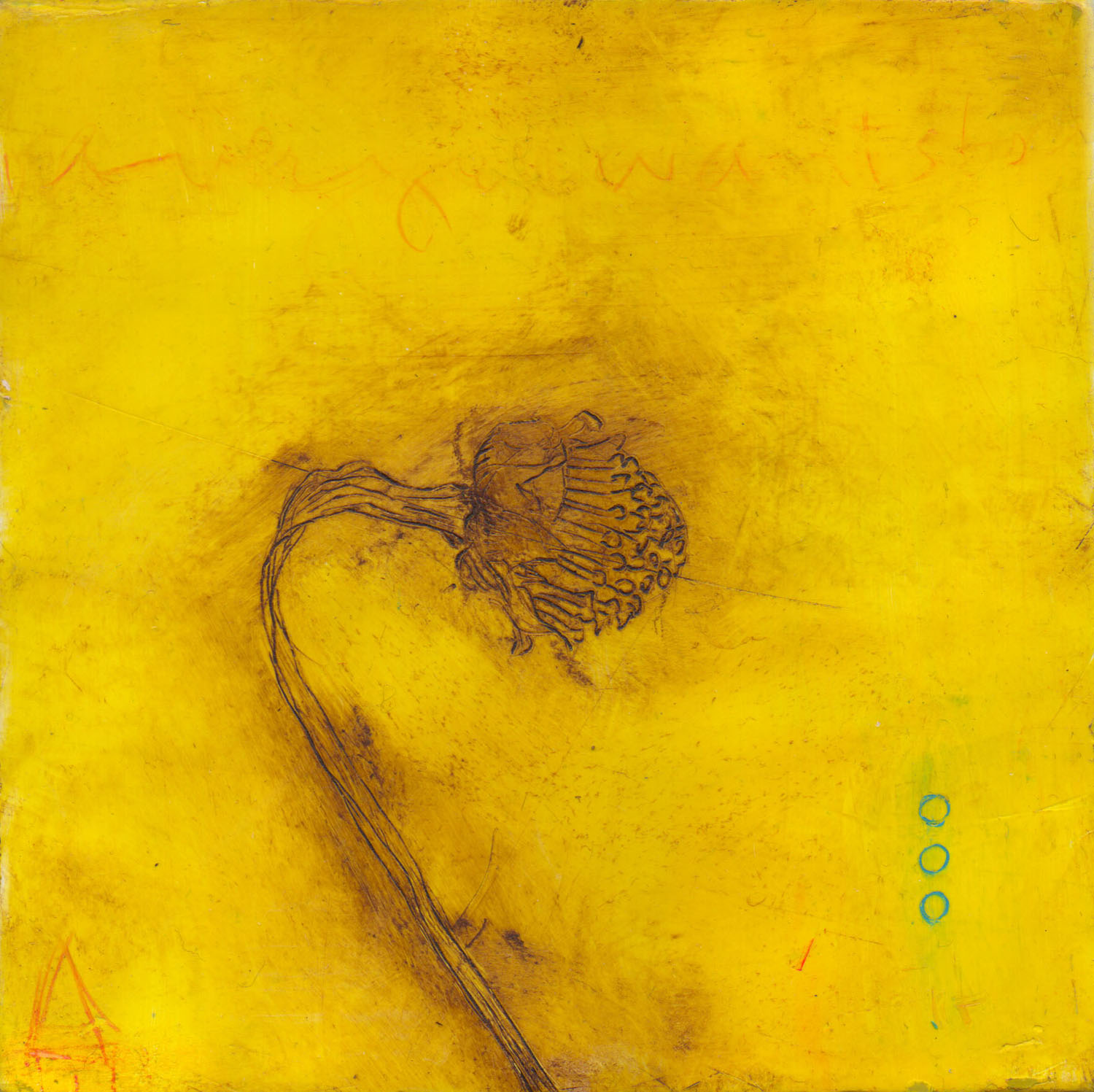 "Bent Yellow Pod 6""x6"""